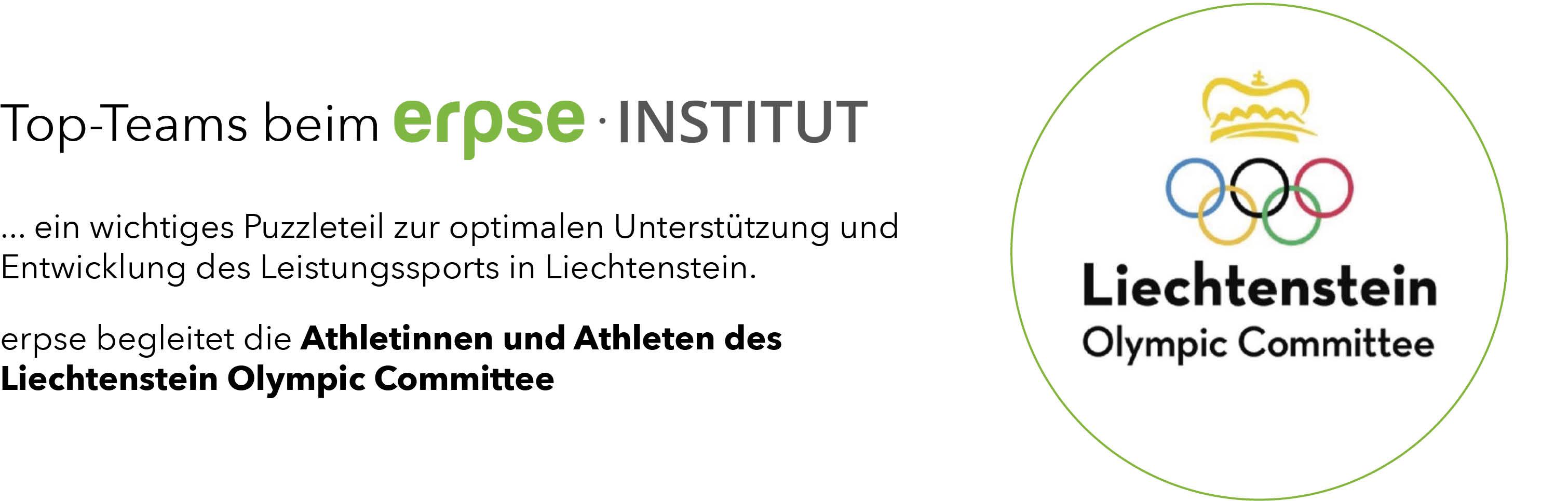 RZ-Website-Slider Referenz Liechtenstein